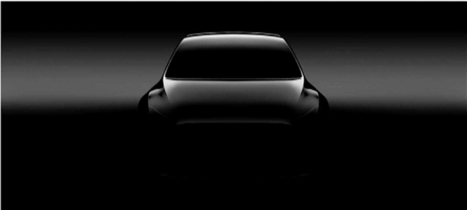 Tesla pick-up: model Y