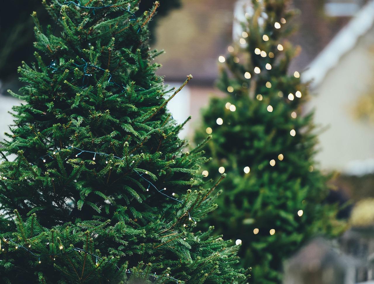 Árboles de Navidad de color verde