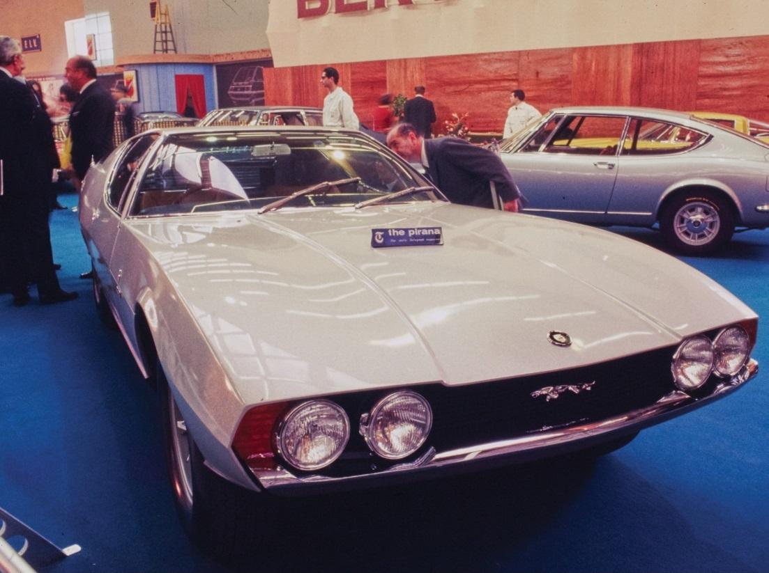 Jaguar Pirana