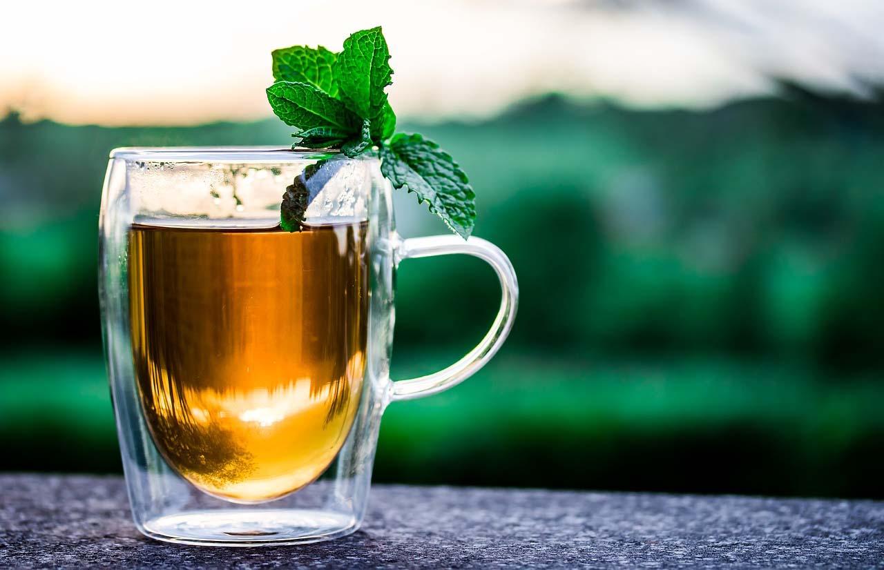 El té se usó en algún momento como propuesta de combustible