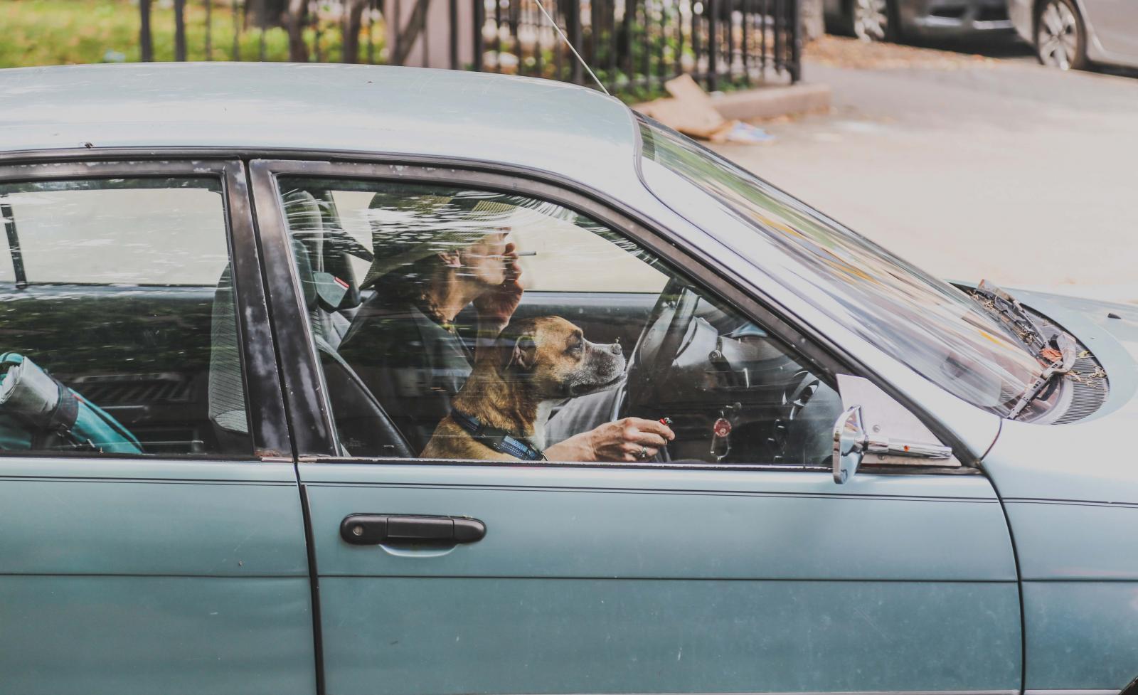 Fumar en el auto puede traer riesgos