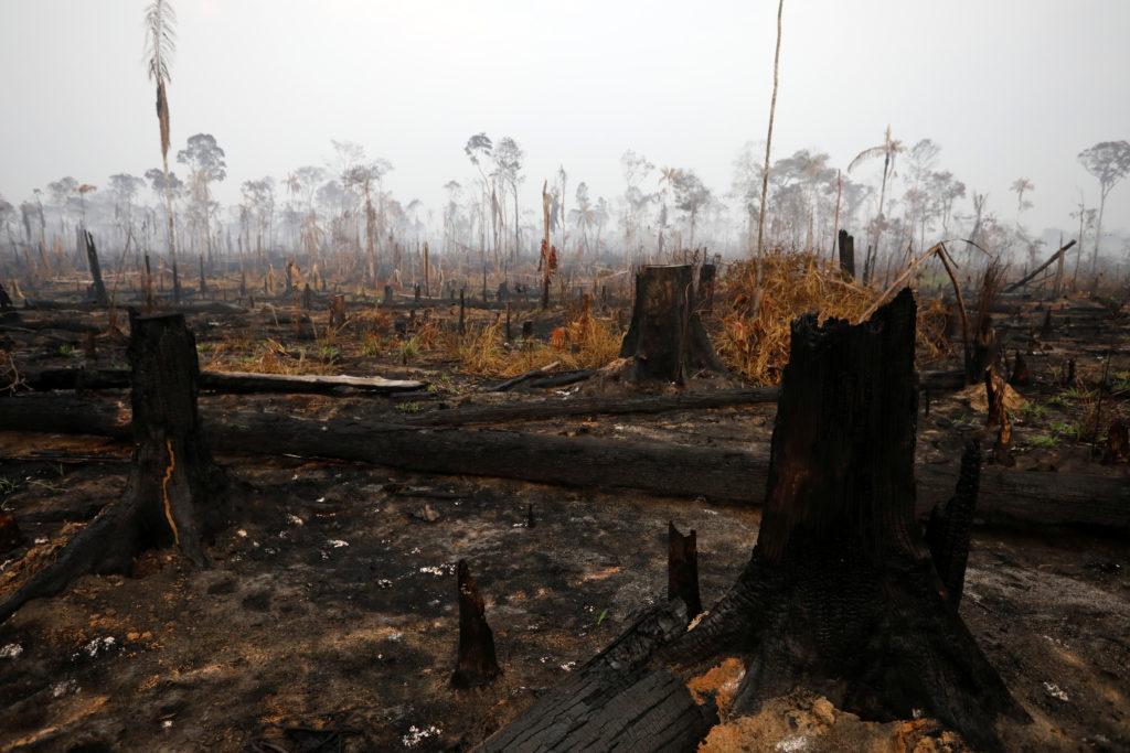 El torneo de SUV eléctricas llegará a una de las zonas devastadas por los incendios del verano