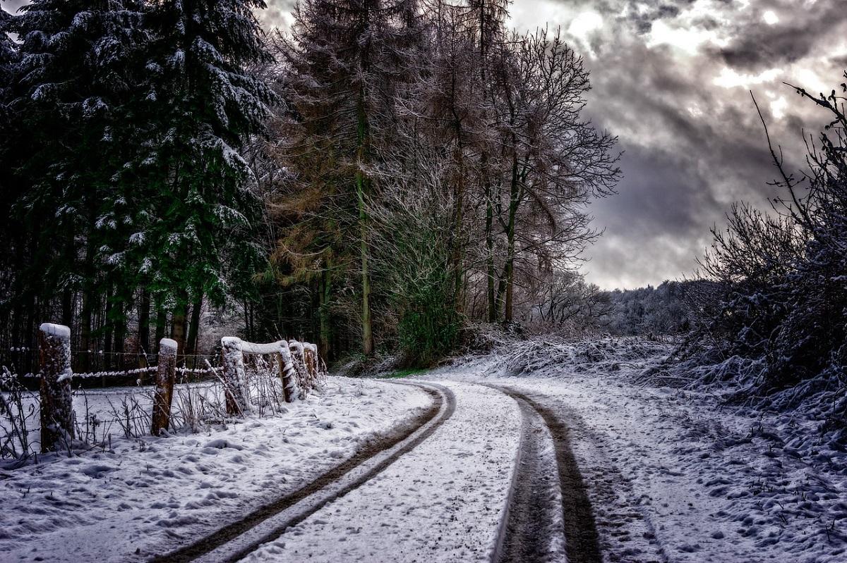 Camino nieve