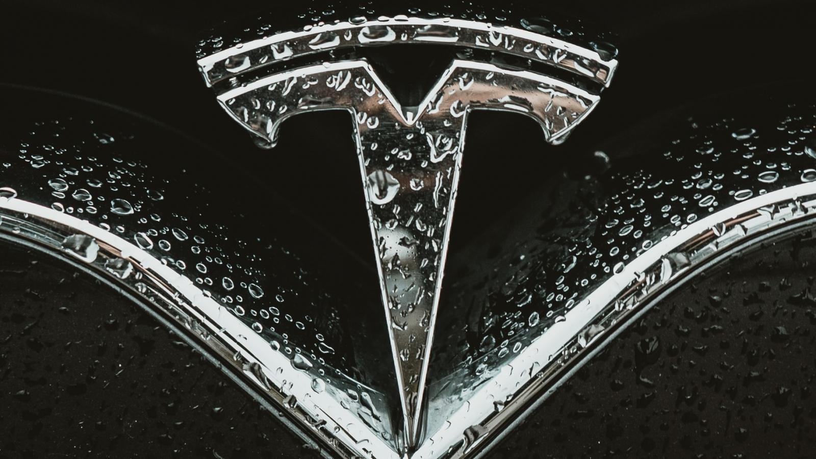 Tesla comenzó a construir sin tener todavía los permisos de planificación