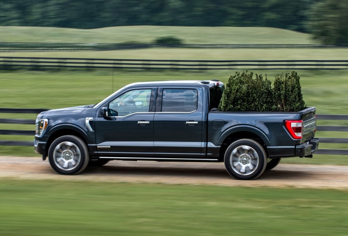 "La Ford Mustang Mach-E es elegida ""Green Car of the Year"""