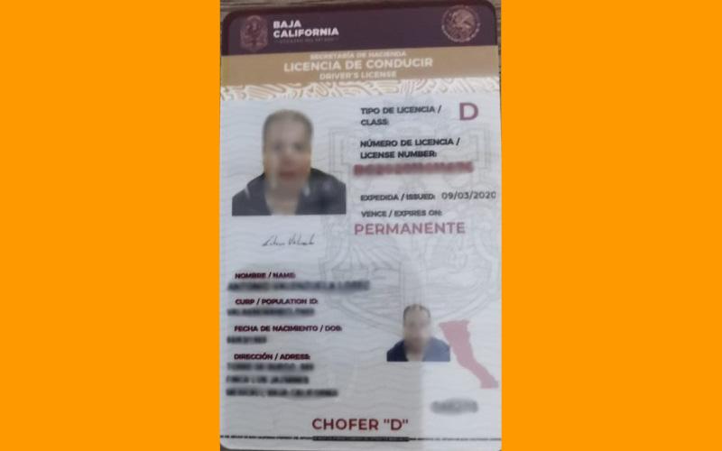 Licencia tipo D Baja California