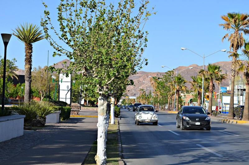 Cómo hacer el cambio de propietario en Chihuahua