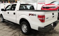 Ford F-150-16