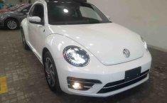 VW Beetle Sound 2018 -8
