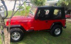 Bonito Jeep Wrangler 1992-0