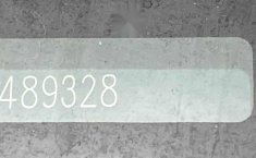 32508 - KIA Sedona 2019 Con Garantía At-16