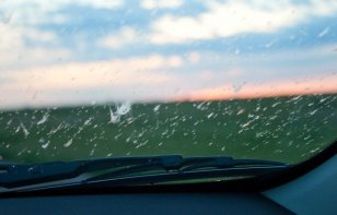 Cómo limpiar los mosquitos y bichos de tu auto
