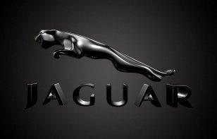 ¿Eres fan de Jaguar? Demuéstralo