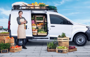 Renault Kangoo 2019: Ventajas y Desventajas