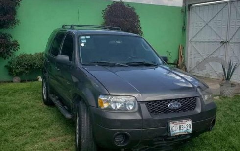 Ford Escape 2006 usado