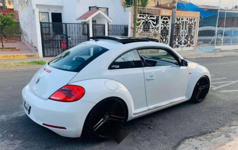 Beetle quemacocos rin 20\