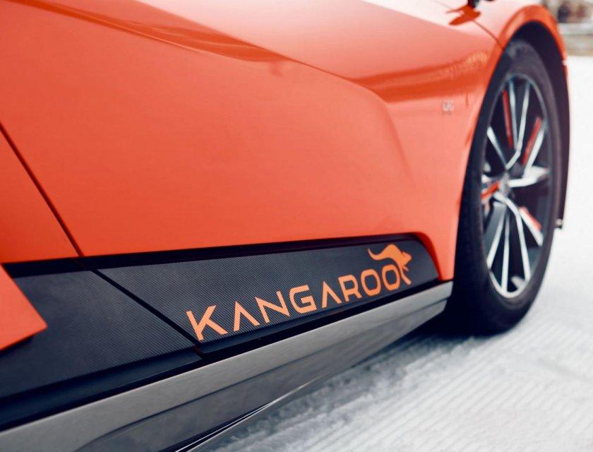 GFG Style Kangaroo Concept