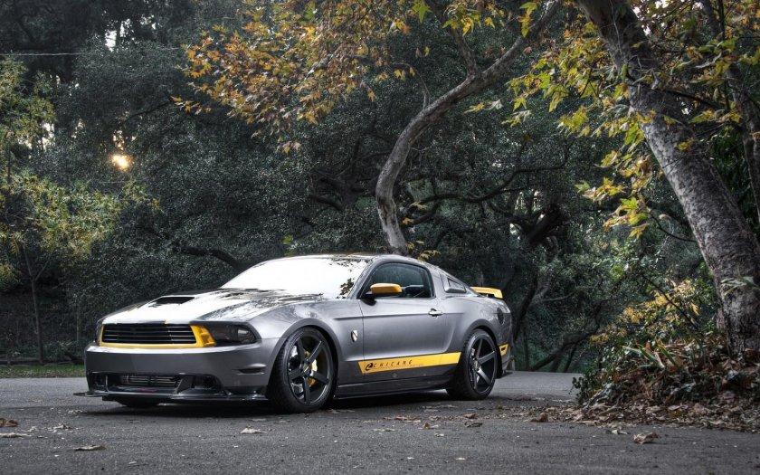 ¿Cuál de las siguientes es una versión especial del Mustang?